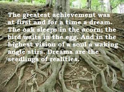 oak dream