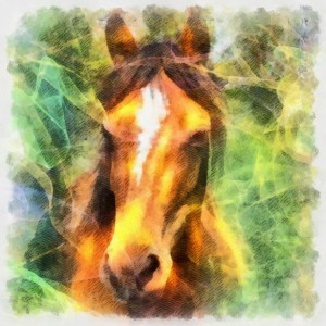 Meaning of the spirit guide power totem animal horse