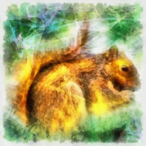 If your animal spirit guide is the squirrel