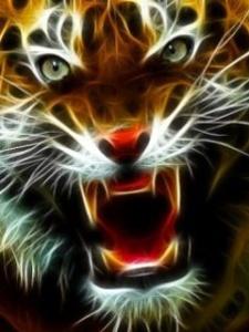 Power totem animal guide tiger